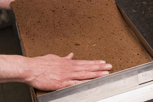Dunkler Biskuitboden : biskuitboden dunkel rezepte suchen biskuitboden wie vom bäcker